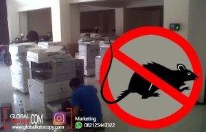Cara Agar Mesin Fotocopy Aman Dari Tikus